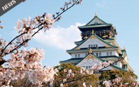 お花見がてら、大阪城まで徒歩で散策して頂けます。