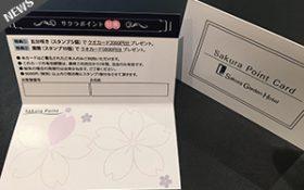 クオカード5,000円分が貯まる!Sakuraポイントカード導入致しました。