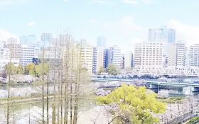 The roof is open to hotel guests during the cherry blossom viewing period (until April 15, 2020)